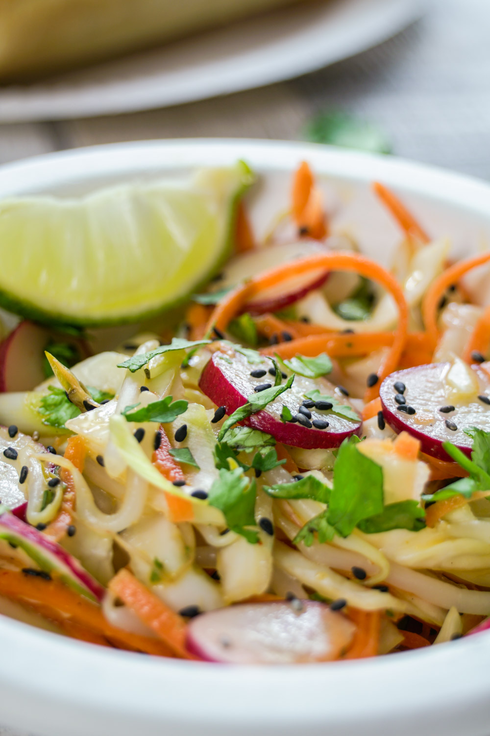Spicy Asian Slaw Recipe - Globe Scoffers | globescoffers.com